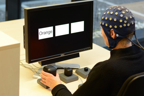 Once they understood the word that appeared on the screen, the test subjects grasped the cube under the word displayed. Photo: CITEC/Bielefeld University