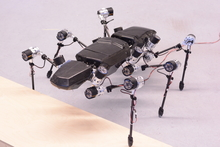 The walking robot Hector took his first steps at the end of 2014. Photo: CITEC/Bielefeld University
