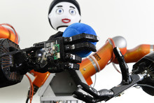 The mechanical hands touch and grasp with the help of additional sensors while the robot head Floka gives direct feedback.