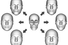 The new computer model can interactively reconstruct multiple facial variants from a given skull, differing in skin thickness distribution. Photo: Bielefeld University/RheinMain University of Applied Sciences